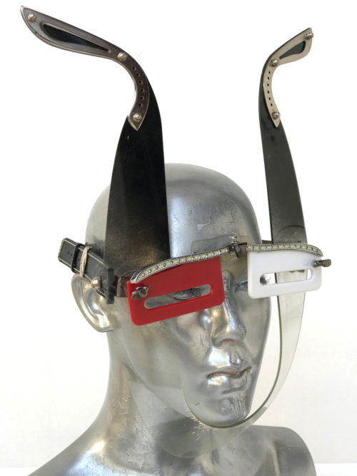 eye wear with antlers